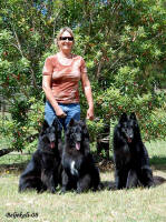 "Me and ""my"" Australian dogs; Zantana, Ucci and Sharif"